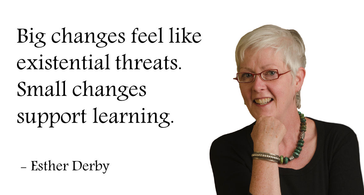 changes small support learning esther derby
