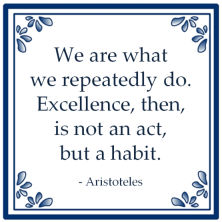 excellence aristoteles