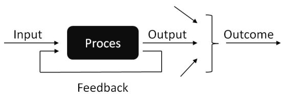 input output proces feedback outcome prestatiesturing